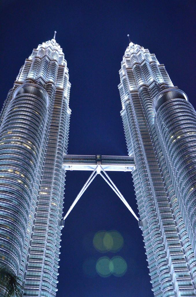 Petronas Twin Tower (11)